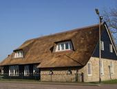 Onderhoud rieten daken en kappen