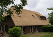 Gerenoveerd rieten dak