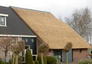 Woonboerderij met half rieten dak