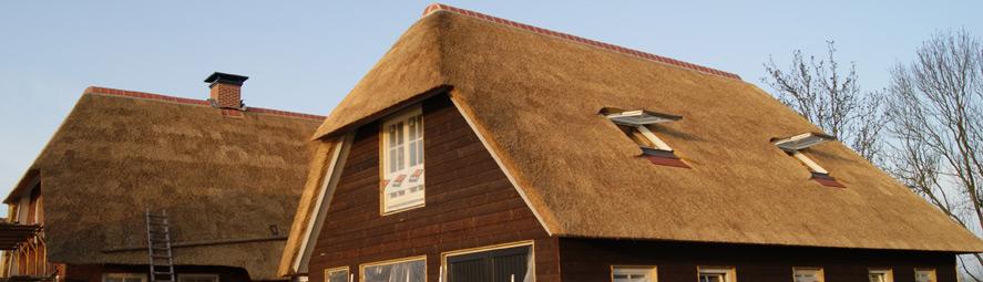 Nieuwbouw rieten dak